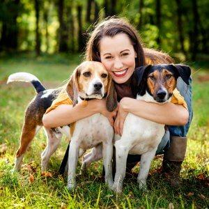 Examen vétérinaire annuel